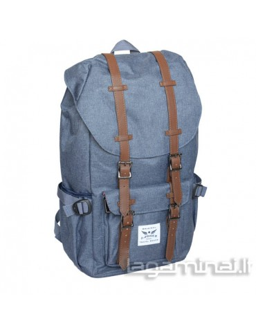 Business travel backpack...