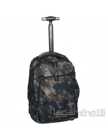 Business class suitcase...