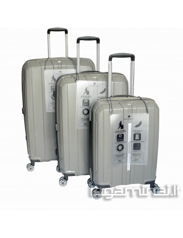 Luggage set SNOWBALL 83803 GY