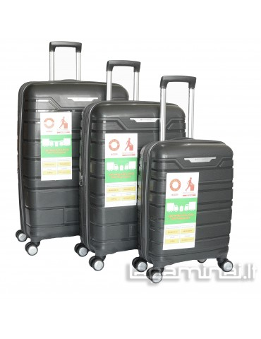 Luggage set SNOWBALL 91103 GY